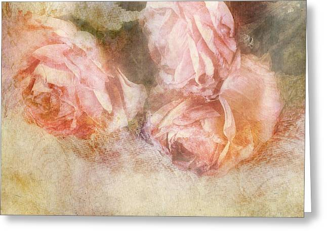 Three Roses Greeting Cards - Roses Greeting Card by HD Connelly