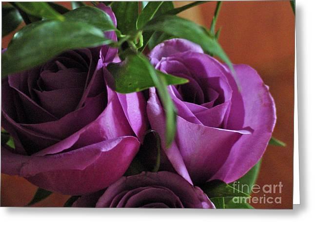 Linda Seacord Greeting Cards - Roses Up Close Greeting Card by Linda Seacord