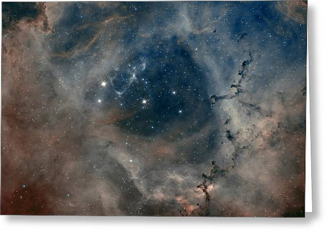 Deepsky Greeting Cards - Rosetta Nebula Greeting Card by Andre Van der Hoeven