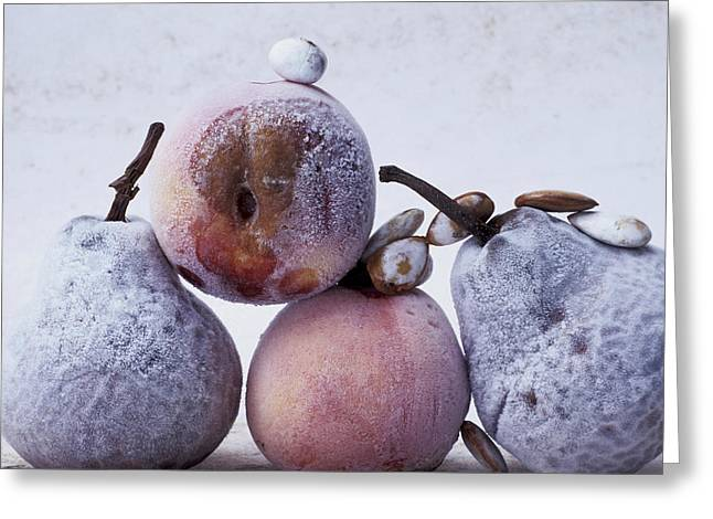 Sugared Almonds Greeting Cards - Rotten pears and apple Greeting Card by Bernard Jaubert