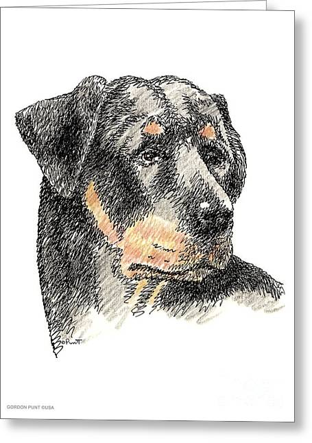 Pen And Ink Framed Prints Greeting Cards - Rottweiler-Artwork Greeting Card by Gordon Punt