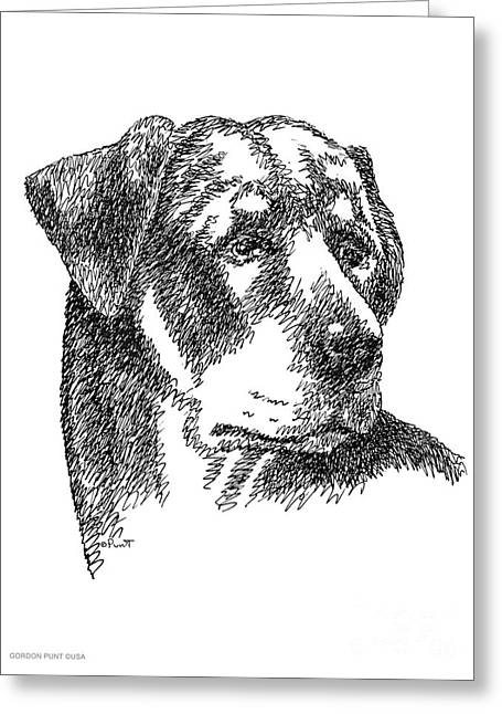 Pen And Ink Framed Prints Greeting Cards - Rottweiler-Drawing Greeting Card by Gordon Punt