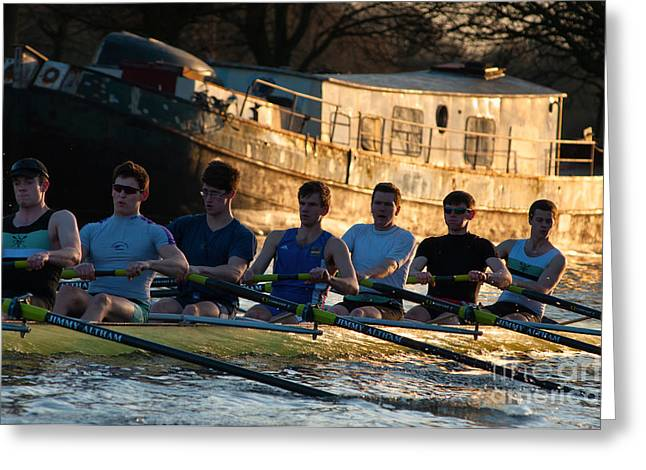 Rowers At Sunset Greeting Card by Andrew  Michael