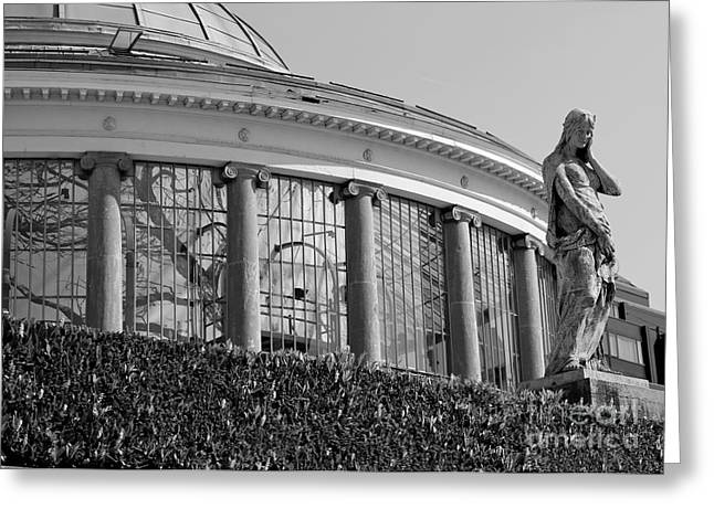 Royal Conservatory In Brussels - Black And White Greeting Card by Carol Groenen