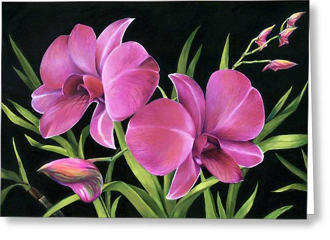 Phalaenopsis Orchid Greeting Cards - Royal Pink Orchids Greeting Card by Nancy Tilles
