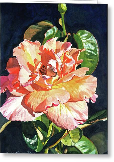Close Up Paintings Greeting Cards - Royal Rose Greeting Card by David Lloyd Glover