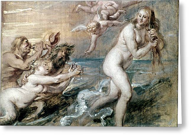 Goddess Birth Art Greeting Cards - Rubens: Venus Greeting Card by Granger
