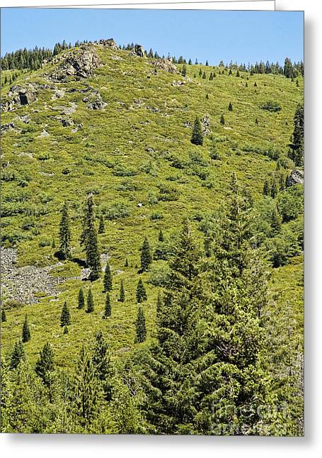Rugged Mountains Greeting Cards - Rugged California Mountains Greeting Card by HD Connelly