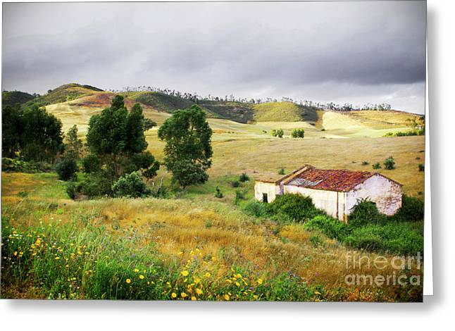 Ruin in Countryside Greeting Card by Carlos Caetano