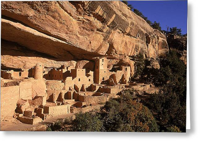 Pre Columbian Architecture And Art Greeting Cards - Ruins Of The Anasazi Cliff Palace Greeting Card by Ira Block