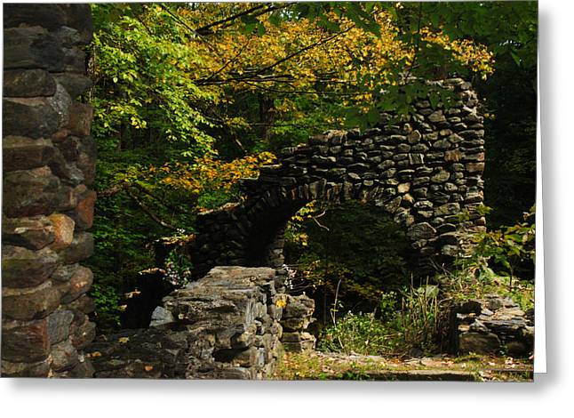 Tanya Chesnell Greeting Cards - Ruins Greeting Card by Tanya Chesnell