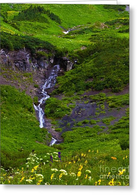 Water Flowing Greeting Cards - Run Off Cascade Greeting Card by Crystal Garner