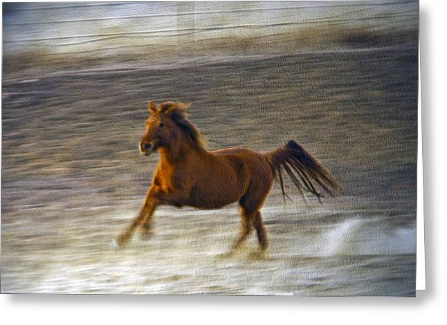 Art Horses Greeting Cards Greeting Cards - Running Horse Greeting Card by James Steele