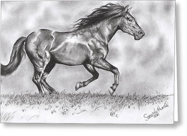 Lone Horse Greeting Cards - Running Greeting Card by Samantha Howell