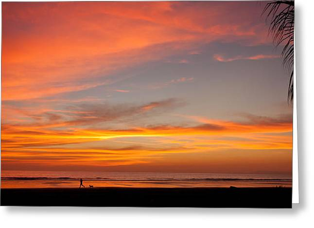 Costa Greeting Cards - Running with a Dog at Sunset Greeting Card by Anthony Doudt