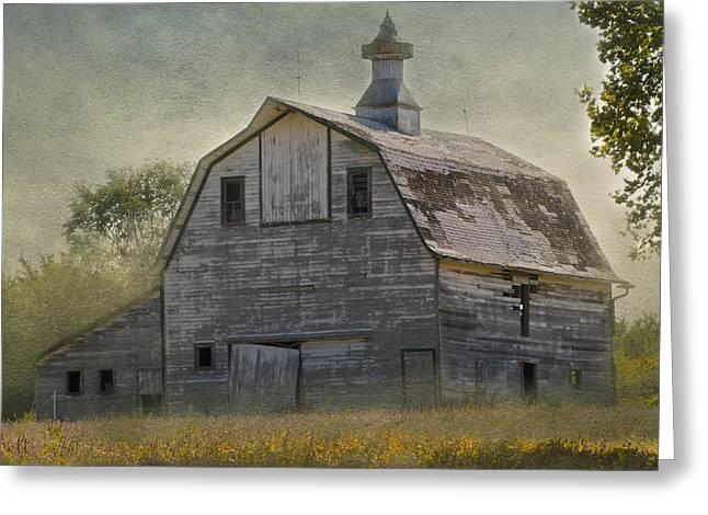 Rural America IIi Greeting Card by Christine Belt