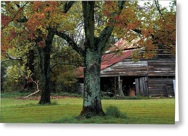 Barn Scenes Greeting Cards - Rural Barn Fall South Carolina Landscape Greeting Card by Kathy Fornal