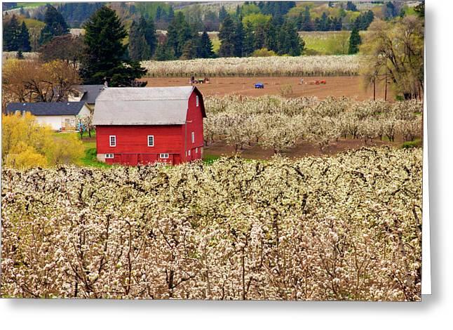 Hood River Greeting Cards - Rural Color Greeting Card by Mike  Dawson