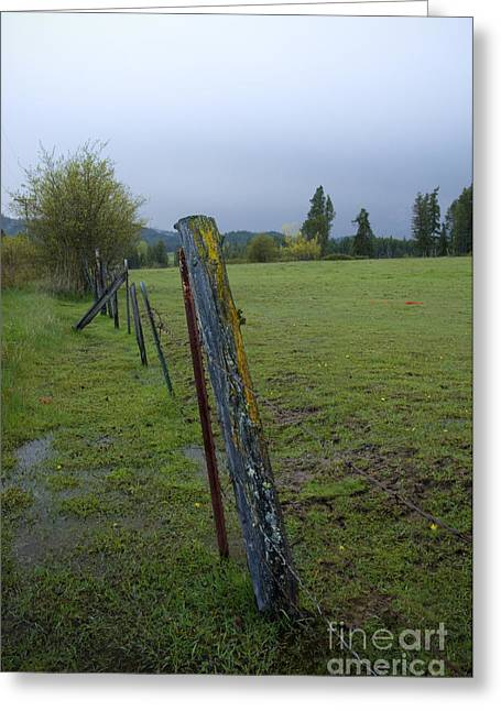 Barbed Wire Fences Greeting Cards - Rural Fence Greeting Card by Idaho Scenic Images Linda Lantzy