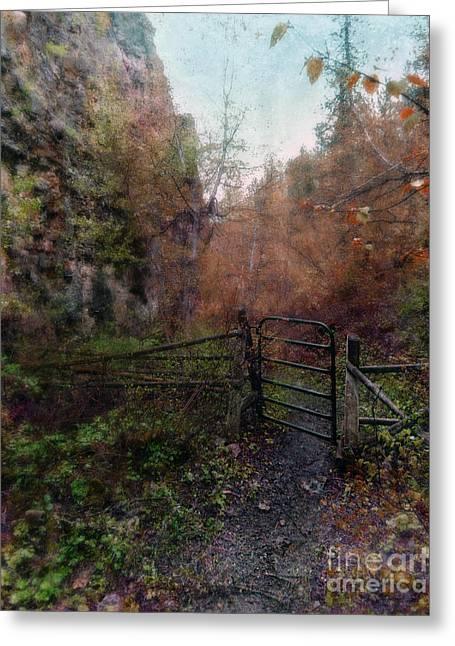 Walk Paths Greeting Cards - Rural Gate Greeting Card by Jill Battaglia