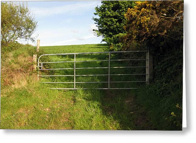 Irish Farm Greeting Cards - Rural Ireland Greeting Card by John Quinn