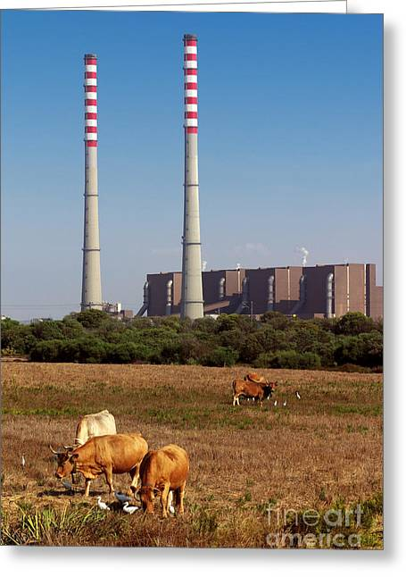 Polluting Greeting Cards - Rural Power Greeting Card by Carlos Caetano