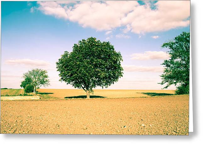 Rural Scene Greeting Card by Tom Gowanlock