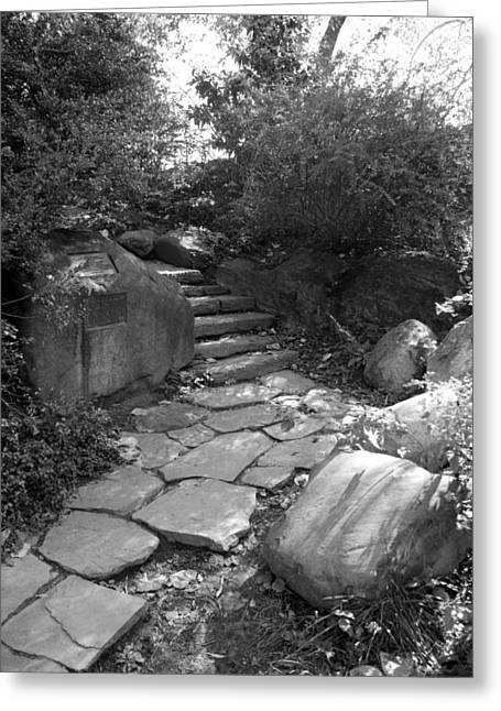 Natral Greeting Cards - RURAL STEPS in BLACK AND WHITE Greeting Card by Rob Hans