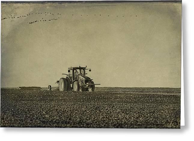 Cotton Farm Greeting Cards - Rural Texas Morning Greeting Card by Melany Sarafis