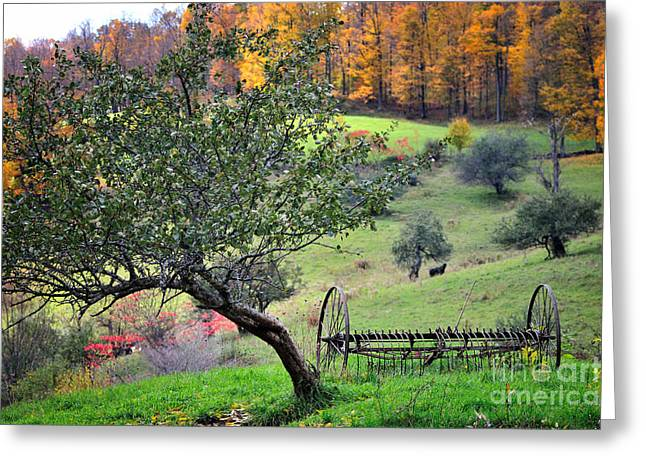 Hay Rake Greeting Cards - Rural Vermont Scenic-Hayrake on the Pasture   Greeting Card by Thomas Schoeller
