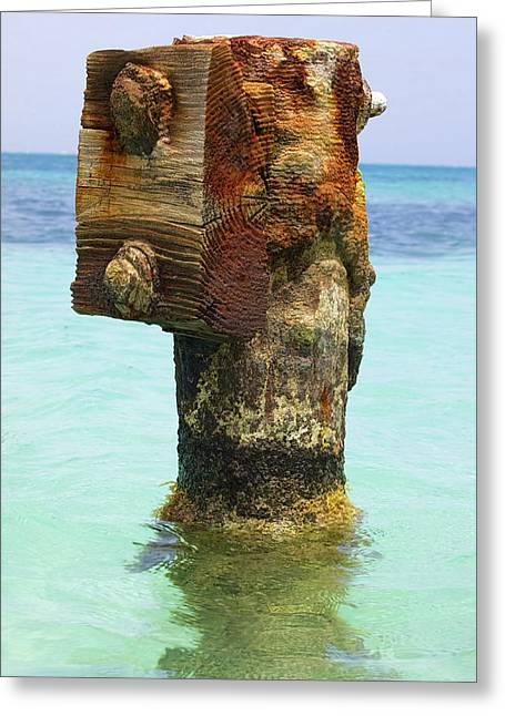 Reddish Flaking Iron Oxide Greeting Cards - Rusted Dock Pier of the Caribbean III Greeting Card by David Letts