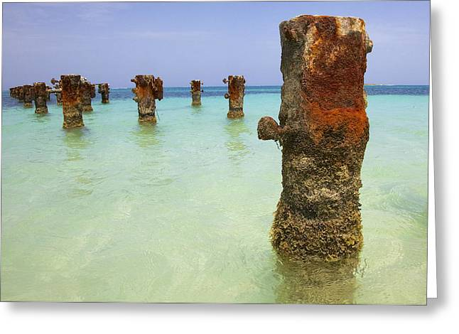 Reddish Flaking Iron Oxide Greeting Cards - Rusted Iron Pier II Greeting Card by David Letts