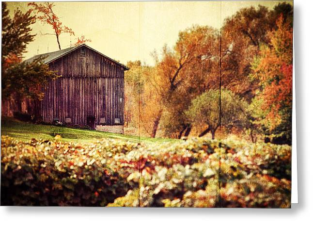 Run Down Greeting Cards - Rustic Greeting Card by Lisa Russo