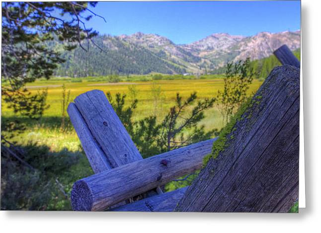 Moss-covered Greeting Cards - Rustic moss covered pioneer era fence in Olympic Valley California Greeting Card by Scott McGuire