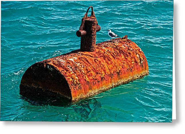 Rusted Barrels Greeting Cards - Rusty Bobber Greeting Card by Christopher Holmes