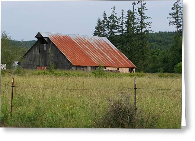 Red Roofed Barn Pyrography Greeting Cards - Rusty Roofed Barn    Washington State Greeting Card by Laurie Kidd