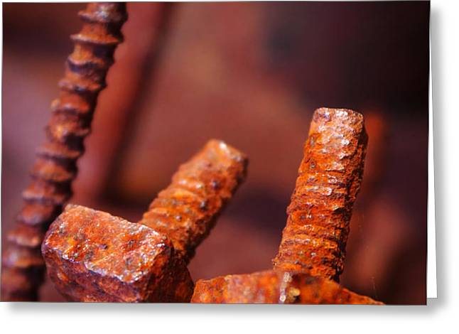 Rusty Screws Greeting Card by Carlos Caetano