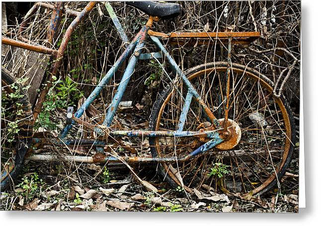 Mechanism Photographs Greeting Cards - Rusty wheel of bicycle Greeting Card by Chavalit Kamolthamanon