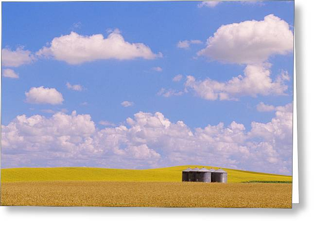 Rye, Canola And Grainery, Bruxelles Greeting Card by Mike Grandmailson