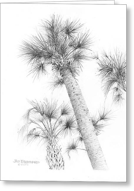 Jim Hubbard Greeting Cards - Sable Cabbage Palm Greeting Card by Jim Hubbard