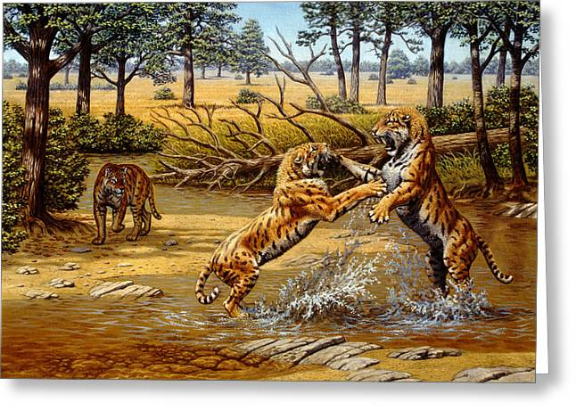 Sharp Teeth Greeting Cards - Sabre-toothed Cats Fighting Greeting Card by Mauricio Anton
