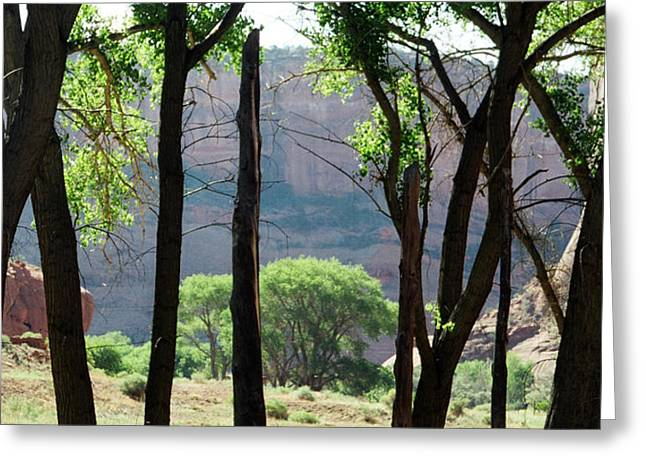 Sacred Space Greeting Cards - Sacred Space - Canyon de Chelly Greeting Card by Dagmar Ceki
