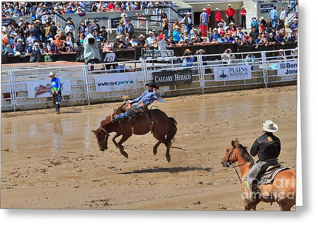 Bucking Horses Greeting Cards - Saddle bronc riding event at the Calgary Stampede Greeting Card by Louise Heusinkveld