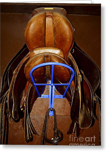 Horseback Photographs Greeting Cards - Saddles Greeting Card by Elena Elisseeva