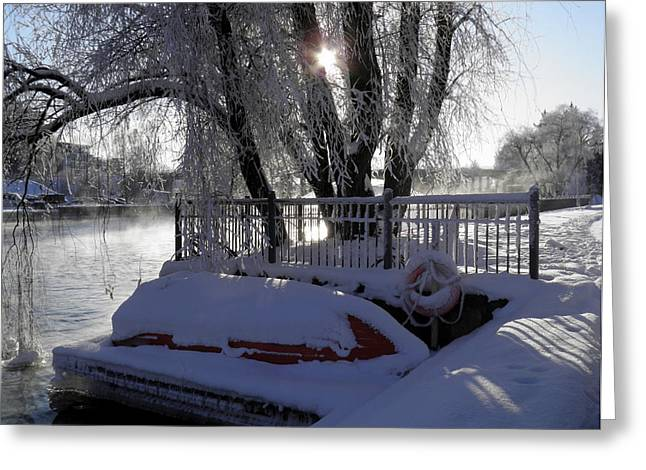 Wintry Greeting Cards - Safe Winter Greeting Card by Sami Tiainen