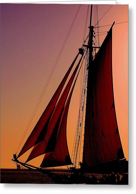 Boat Cruise Greeting Cards - Sail at Sunset Greeting Card by Susanne Van Hulst