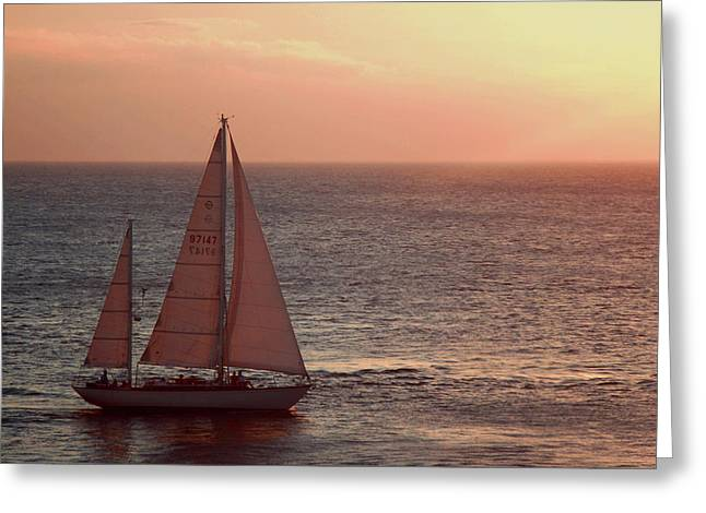 Ocean Sailing Greeting Cards - Sail Away Greeting Card by Maria Arango