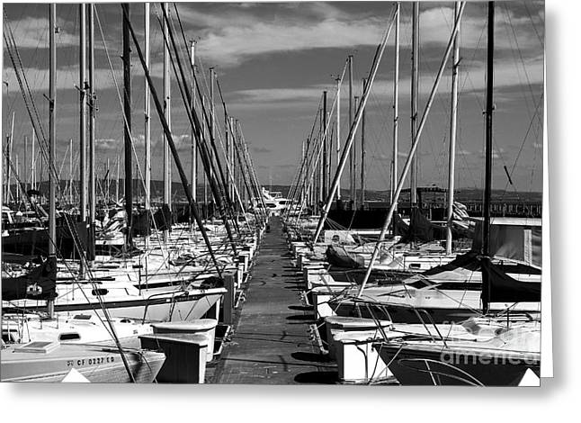 Sailboat Photos Greeting Cards - Sail Boats at San Francisco China Basin Pier 42 With The Bay Bridge in The Background . 7D7166 Greeting Card by Wingsdomain Art and Photography