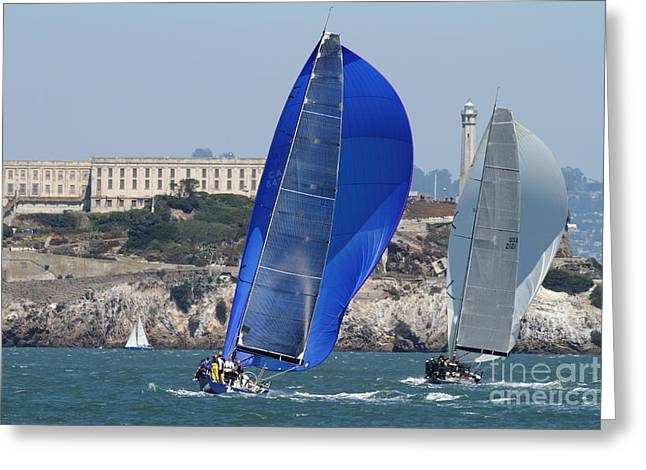 Alcatraz Greeting Cards - Sail Boats on The San Francisco Bay - 7D18355 Greeting Card by Wingsdomain Art and Photography