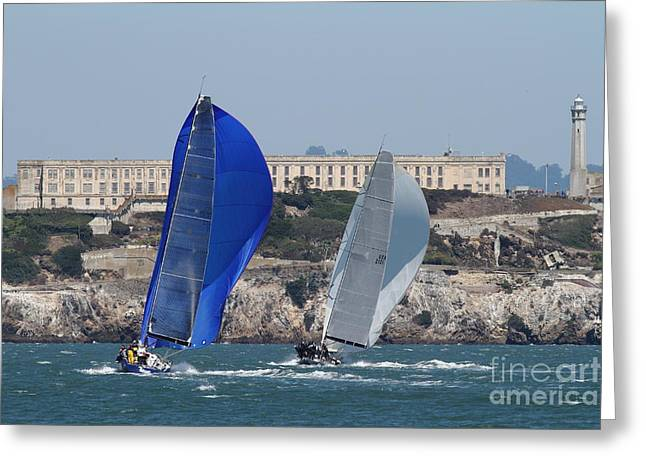 Alcatraz Greeting Cards - Sail Boats on The San Francisco Bay - 7D18360 Greeting Card by Wingsdomain Art and Photography